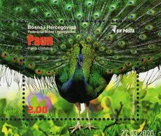 Bosnia & Herzegovina - Sarajevo - 2020 - Indian Peafowl - Pavo Cristatus - Mint Souvenir Sheet - Bosnia And Herzegovina