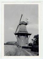 HOLTLAND - Niedersachsen - Keis Leer - Mühle - Molen - Moulin - 1951 - Foto 9 X 6,5 Cm - Leer
