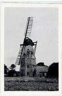 HOLTHÜSERHEIDE - Niedersachsen - Weener - Kreis Leer - Mühle - Molen - Moulin -1951 -Foto 9 X 6,4 Cm - Kriegsschaden - Leer