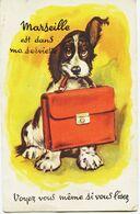4661 - MARSEILLE   : PETIT COCKER  Carte à Systéme  ( Vue Sous Le Cartable) Circulée 1953 - Altri
