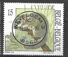 OCB Nr 2480 Relmuis Loir   - Centrale Stempel Wevelgem - Used Stamps
