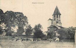 CPA 12 Aveyron Ceignac Troupeau - Autres Communes