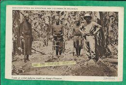 """Documentation Du Ministère Des Colonies De Belgique """"Tombe De Soldat Indigène Tombé Au Champ D'honneur"""" 2scans 1914-1918 - Geschiedenis"""