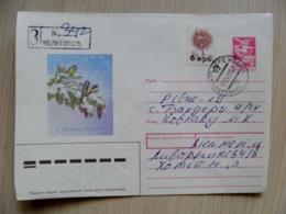 Cover Ukraine Melitopol 1993 Registered Overprint Post Stamps 6 Krb.  Postal Stationery New Year Birds - Ukraine