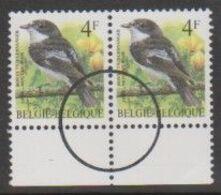 2654 XX Bonte Vliegenvanger - Gobe-Mouches Noir - Perszegels In Paar - 1985-.. Pájaros (Buzin)