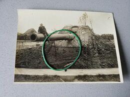 Moere Leugenboom Canon Photo Originale Armée Belge - Non Classificati
