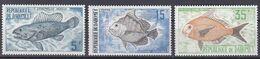 Tr_ Dahomey 1973  - Mi.Nr. 531 - 533 - Postfrisch MNH - Tiere Animals Fische Fishes - Fishes