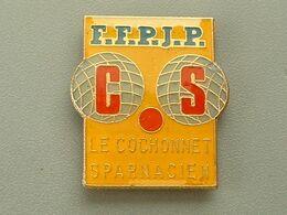 Pin's PETANQUE - FFPJP - LE COCHONNET SPARNACIEN - EPERNAY - Boule/Pétanque