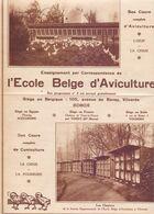 Orig. Knipsel Coupure Tijdschrift Magazine - Vilvoorde , L'Ecole Belge D' Aviculture à Vilvorde - 1929 - Oude Documenten