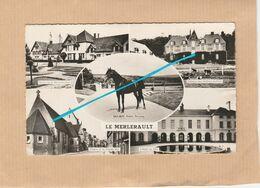 Dept 61 : ( Orne ) Le Merlerault, Multi Vue, Cheval, Haras, Eglise, Hotel De Ville, Château. - Le Merlerault