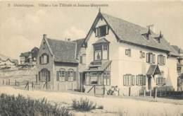 Belgique - Heyst - Duinbergen - Villas - Les Tilleuls Et Jeanne-Marguerite - Heist