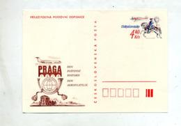 Carte Postale 4.40 Cavalier Avion Illustré Expo Praga - Entiers Postaux