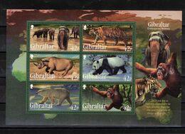 GIBRALTAR  Timbres Neufs ** De 2011 ( Ref  7025 )  Animaux - Espèces En Danger - Gibraltar