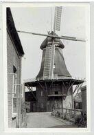 PLZ 26844 - JEMGUM -1951 - Niedersachsen - Kreis Leer - 2 Foto's 10 X 6,9 Cm - Mühle- Molen - Moulin - Leer