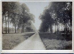 Tour En Bessin (14) : Photo CDV Avenue De Vaulaville. Fin XIXème. - Antiche (ante 1900)