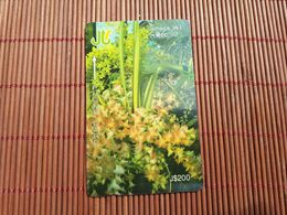 Jamaica Phonecard  200 $ Control Number 13 JAME  Used Rare - Giamaica
