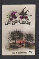 SPINEUX-UN BONJOUR-DE SPINEUX-UN HIRONDELLE APPORTE UNE LETTRE-CARTE ECRITE VOYEZ LES 2 SCANS-RARE ! ! ! - Trois-Ponts