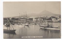 Cartolina/Postcard - Non Viaggiata (unsent) - Torre Del Greco, Panorama - Torre Del Greco