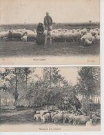 Lot De 2 CPA Landes - Bergerie Des Landes / Bergers Landais (très Jolies Scènes Avec Troupeau De Moutons) - Ohne Zuordnung