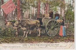 CPA Précurseur Landes - Dans La Forêt, Mise En Barrique De La Résine (très Belle Scène) - Sin Clasificación