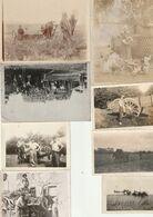 Lot De 15 Photos Années Début XX - Travaux Des Champs, Agricoles Batteuse, Labour - Animaux   - Scan R/V - Cars
