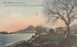 2511193Insel Grafenwerth Mit Bilck Auf Den Drachenfels. - Sin Clasificación