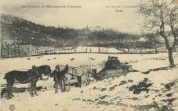 43 , Un Courrier De Montagne En Traineau , CF * 346 25 - Otros Municipios