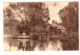 GENVAL LES EAUX - L' île - Le Pont Rustique - Pavillon Japonnais - 1921 - Phob - Rixensart