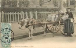 03 , VICHY , Laitiere Bourbonnaise ( Attelage Ane ) , CF2 * 361 27 - Vichy