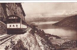 481/ Arth-Rigi-Bahn, Kräbelwand, Trein, Photoglob - SZ Schwyz