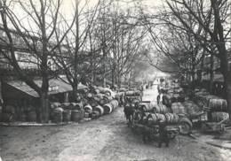 Paris -La Halle Au Vin [CPM Paris 1900] - Altri Monumenti, Edifici