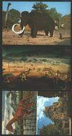 USA 3 PC Dinosaurs Fossils - Prehistorics