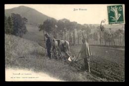 88 - LES VOSGES - VOSGIEN AU LABOUR - THEME AGRICULTURE - Frankreich