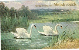 Melsbroeck , Goedendag Uit ... - Steenokkerzeel