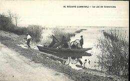 Bouaye  Le Lac De Grand Lieu - Bouaye