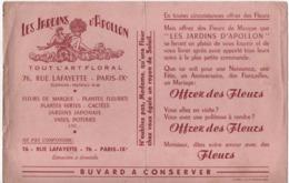 Buvard Ancien/ Fleuriste/ LES JARDINS D'APPOLON/Tout L'Art Floral/ Rue Lafayette/Paris IXéme/Stoffel/Vers 1950    BUV466 - F