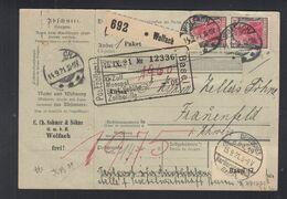 Dt. Reich Paketkarte 1921 Wolfach Nach Schweiz - Duitsland