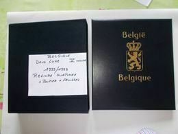 BELGIQUE -  DAVO Luxe   Album  V  RELIURE  Ouatinnée + BOITIER  + Contenant Feuilles De L'année 1995 A 1999 - Bindwerk Met Pagina's