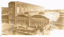 31 TOULOUSE  A.Z.D. F  L'o.n.ia  164X129 Photo Doucument  1929 /1933 DOS BLANC TBE  705 - Toulouse