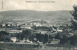 N°3013 R -cpa Belmont -vue Générale Prise De Biesse- - Belmont De La Loire