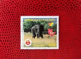 GUINÉE 1991 1 V Neuf MNH ** Rare Care Bears Elephant African Wildlife Mammifère Mammal Mamífero Saügetier GUINEA - Elefanti