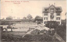 ST GALLEN III Rotmonten Schweiz Gärtnerei Eiselt Belebt 5.4.1916 Gelaufen - SG St. Gall
