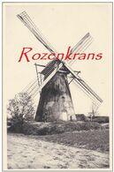 Kasterlee Oostmolen Beermolen Terlo Antwerpse Kempen Windmolen Windmill Moulin A Vent (In Zeer Goede Staat) - Kasterlee