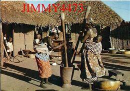 CPM - L'AFRIQUE EN COULEURS - Scène Villageoise - Cameroun - N° 4263 - Edit. IRIS - Scans Recto-Verso - Cameroon