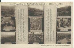 CHAVANAY    ( LOIRE )   LES VIGNOBLES 666 COTES DU RHONE - Francia