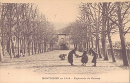 80 - MONTDIDIER / ESPLANADE DU PRIEURE - Montdidier
