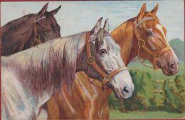 Illustrator Illustrateur Paard Pferd Horse Cheval Horses Chevaux CPA Old Postcard - 1900-1949