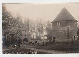 Néville. Carte-photo. Ferme Du Colombier. - Other Municipalities