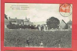 SAVENNIERES 1911 CHATEAU DE CHAMBOUREAU VIGNOBLE CARTE EN BON ETAT - Other Municipalities