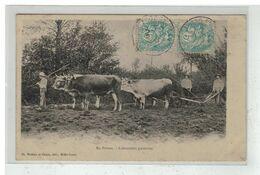 79 EN POITOU #14626 LABOUREURS POITEVINS ATTELAGE DE BOEUFS HERSE - Francia